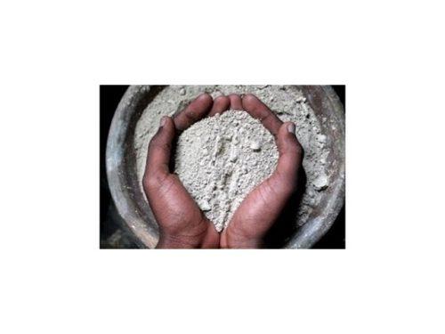 Terre-de-diatomee-1kg-insectifuge-462-2-big-1-www-autourdesplantes-com